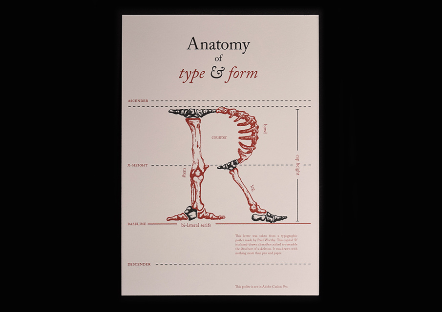Anatomy of Type - Paul Worthy